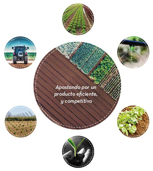 infografia-proteccion-de-cultivos